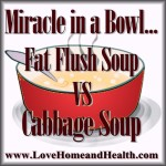 Miracle in a Bowl ... Fat Flush Soup vs. Cabbage Soup @ www.LoveHomeandHealth.com