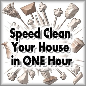 How to Speed Clean Your House Fast!