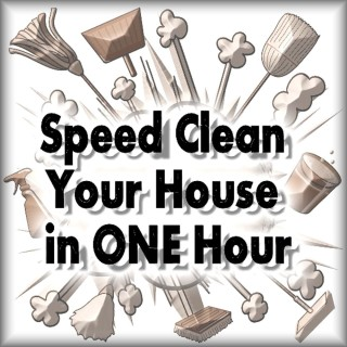 Speed Clean Your House in One Hour - www.LoveHomeandHealth.com