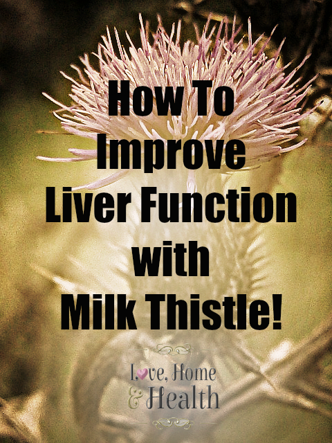 Learn How to Improve Liver Function with Milk Thistle! Milk Thistle taken faithfully can REVERSE many Liver Problems!