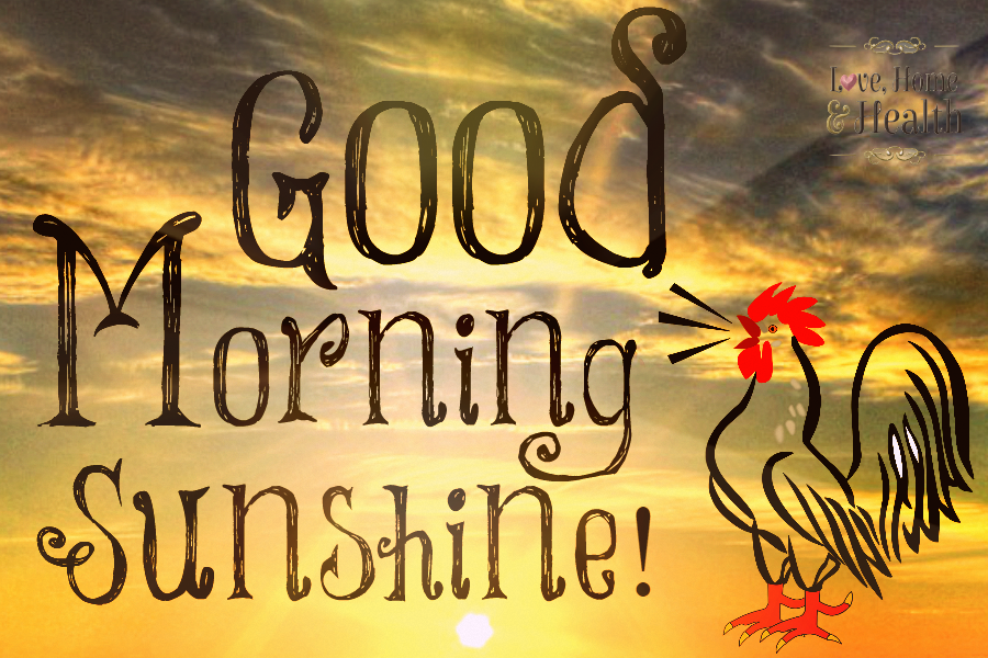 Good Morning My Sunshine In German : Good morning sunshine love home and health
