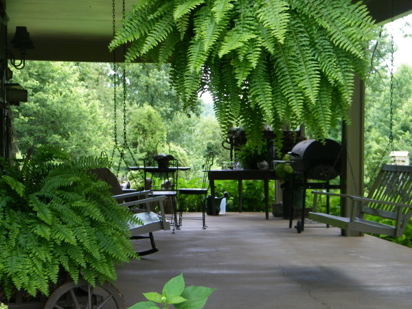 Patio Decorating Ideas - www.LoveHomeandHealth.com