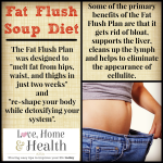 """Fat Flush Soup Diet - love, home and health"""